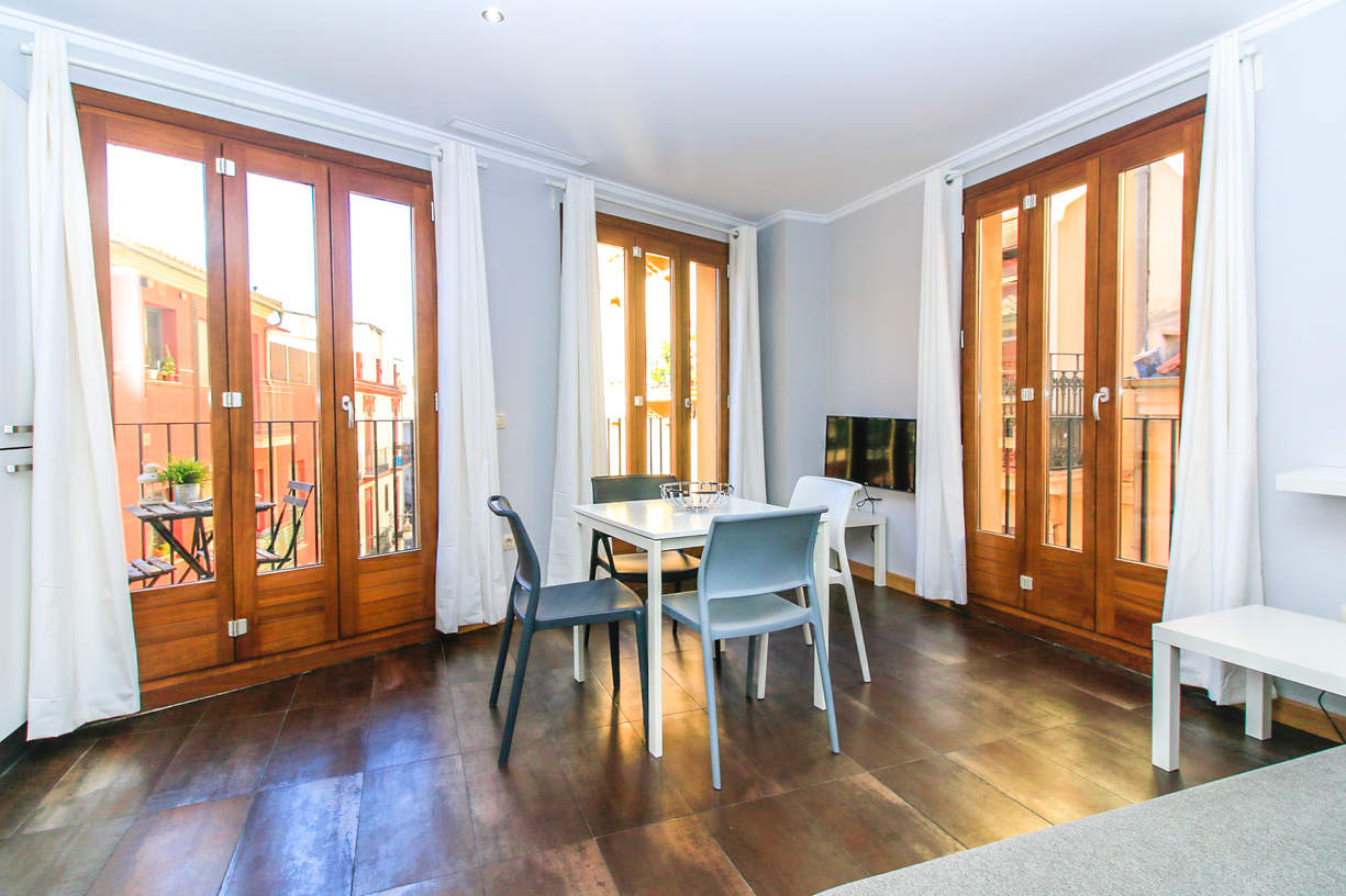 TRA1. 1 Bedroom with balcony. El Carmen. Valencia.